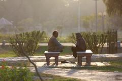 0F1A3712 (Liaqat Ali Vance) Tags: people portrait lawrence garden nature google liaqat ali vance photography lahore punjab pakistan