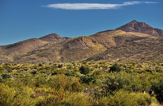 A Desert Landscape and Mountains Peaks