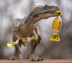 So much coughing (JKLsemi) Tags: aroundthehouse intheyard dinosaur coughdrops cold sorethroat ricola