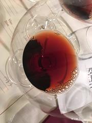 IMG_3648 (burde73) Tags: vietti barolo castiglione falletto villero langhe tasting wine nebbiolo cantina cellar