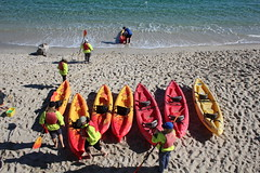 IMG_7573 (mudsharkalex) Tags: california pacificgrove pacificgroveca loverspointpark loverspointbeach beach