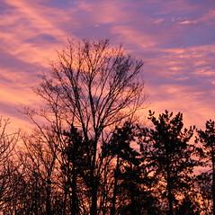 Enfin de la couleur ! (OliBac) Tags: olibac ciel sky couleur color colour canoneos750d mmxviii