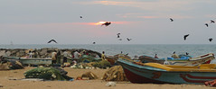 Negombo (Meino NL) Tags: srilanka sunset negombo sea beach boats laccadivesea
