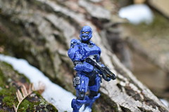 DSC_0275 (TheGame21x) Tags: halo4 halo5 halo actionfigures figures figurines toys dolls nature snow cold videogames games gaming nikon nikond3400 dslr nikonphotography wood moss blue soldier masterchief haloactionfigures bokeh d3400 dslrphotography toyphotography unsc outdoors wooden natural 35mm 35mmlens