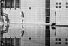 Reflection S21 (Bilderschachtel Photography) Tags: minimalism minimal candidstreet light bilderschachtel fotowalk photowalk streetphotography street strasenfotografie streetlife schwarzweiss stuttgart station bahnhof reflection dove bw blackandwhite blackwhite water citylife city candid contrast flickr fuji fujifilmxt10 lady fujilove streetlab0711 lines symmetry visionsofstreet instakwer