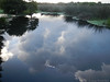 Reflection (Arthur Windsor - Florida Wildlife) Tags: green cay nature center boardwalk wetlands water reflection boynton beach florida