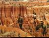 20160821_35 Distant trail | Bryce Canyon, Utah (ratexla) Tags: ratexlasgreentortoisetrip2016 ratexlascanyonsofthewesttrip2016 greentortoise canyonsofthewest 21aug2016 2016 canonpowershotsx50hs bryce brycecanyon utah usa theus unitedstates theunitedstates america northamerica nordamerika earth tellus photophotospicturepicturesimageimagesfotofotonbildbilder wanderlust travel travelling traveling journey vacation holiday semester resaresor ontheroad hiking hike sommar summer beautiful nature landscape scenery scenic sandstone mountain mountains berg canyon canyons orange hoodoo hoodoos trail trails ratexla photosbyjosefinestenudd almostanything unlimitedphotos favorite