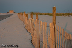 Pensacola Beach, Florida (M.J. Scanlon) Tags: beach camera canon capture coast copyrighted digital florida gulfofmexico image landmark landscape mjscanlon mjscanlonphotography mojo pensacolabeach photo photog photograph photographer photography picture sand scanlon shore wow ©mjscanlon ©mjscanlonphotography sunset fence