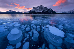 Bubble City (Hilton Chen) Tags: ice bubbles winter colorfulsky landscape alberta ultrawideangle abrahamlake canada methane mountmichener sunrise frozen clearwatercounty ca