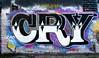 graffiti amsterdam (wojofoto) Tags: graffiti streetart amsterdam nederland netherland wojofoto wolfgangjosten holland ndsm hof cry