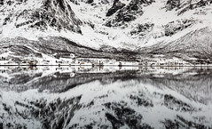 A Winter Mirror (Tracey Whitefoot) Tags: 2018 tracey whitefoot norway snow mountains winter january calm still reflection reflections houses mirror nordland bleak cold water lake
