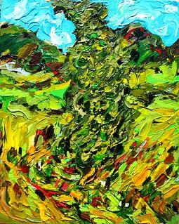 Blowing Cypress Tree.