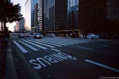 Av. Paulista, São Paulo (Celso Kuwajima) Tags: epsonv800 silverfastai building sunset street streetphotography people leicam4 leicasuperangulon13421mm kodakportra160 pedestriancrossing analogphotography buslane sãopaulo brazil br