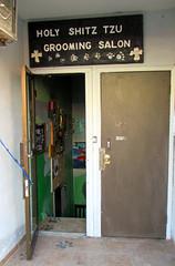 BS055 (nicholasruddick) Tags: toronto bloorstreet