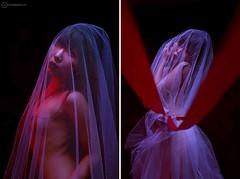 Miyu: from a workshop this weekend at my studio (Alfie   Japanorama) Tags: nude japan japanese woman asian studio strobe strobist tokyo red veil fuji fujix100s