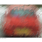 Rain, rain, go away (Explored) thumbnail