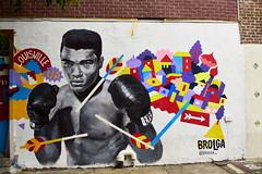 DSC06079 (joeluetti) Tags: nyc williamsburg graffiti muhammadali
