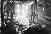 It's raining, Rome - 2017 (davide978) Tags: davide978 davidecolli davidecolliphotography roma rome italy italia street strada europa europe 2017 canon davide978davidecollidavide collicanonitalyitaly mg2061 its rainin pioggia rain light cars people persone via cavour