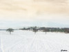 Farm - Lichfield (cattan2011) Tags: snow trees farms traveltuesday travelphotography travelbloggers travel naturelovers natureperfection naturephotography nature landscapephotography landscape england lichfield 英国