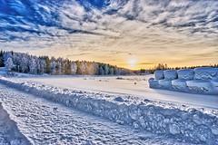 Jämteböle 20180113 (johan.bergenstrahle) Tags: winter vinter sweden sverige natur landskap landscape january januari finepicsse 2018