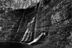 Triple Falls (Black & White, Buffalo National River) (thor_mark ) Tags: blackwhite blueskies bostonmountains buffalonationalriver buffalonationalriverwilderness capturenx2edited colorefexpro day2 landscape lookingse nature nikond800e northamericaplains outside ozarkhighlands ozarkplateau ozarkstfrancisnationalforests portfolio project365 silverefexpro2 sunny trees triptoozarknationalforestandmountains triplefalls waterfall waterfalls harrison arkansas unitedstates