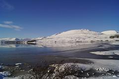 Snow (sheilarogers22) Tags: glencoe snow white cold blue loch mountains ice tree sonyslta77