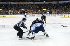 "Kansas City Mavericks vs. Toledo Walleye, January 20, 2018, Silverstein Eye Centers Arena, Independence, Missouri.  Photo: © John Howe / Howe Creative Photography, all rights reserved 2018. • <a style=""font-size:0.8em;"" href=""http://www.flickr.com/photos/134016632@N02/39130006904/"" target=""_blank"">View on Flickr</a>"