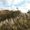 Nationalpark Thy (4) (mrstendal) Tags: nationalpark thy