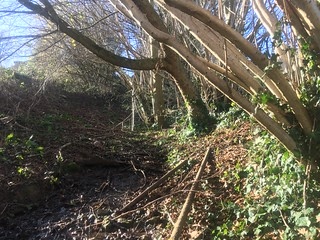 hollowway abandoned