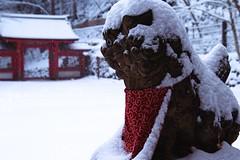 貴船神社(Kifune Shrine) 雪景色-9 (転倒虫) Tags: 京都 日本 貴船神社 雪 雪景色 朝 神社 kyoto japan snow kifunejinjya shrine 冬 winter snowscape 静寂 silence quiet 白 white