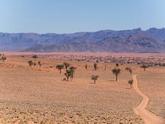 NamibRand mountains (Melvinia_) Tags: olympusomdem1 namibia namibie desert désert namibrand naukluft namibrandfamilyhideout landscape sand africa afrique afriqueaustrale geoafrica