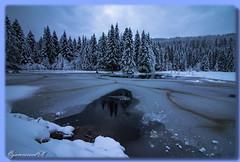 Lac de Lispach (La Bresse - Vosges) (jamesreed68) Tags: lispach 88 bresse france vosges paysage nature lac hiver canon eos 600d glace eau