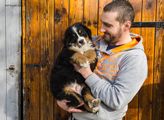 DSC00263 (sportsHUN) Tags: landscape babys dogs puppies portre