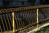 _AAA7523 (S. Hemiolia) Tags: cancellata emilia campagnola luce light sole sun afternoon pomeriggio contrasto contrast manualfocus nikkor nikon d700 f4 105 105mm micro macro