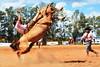 Luciano Rojas e Miralejos de La Cobiçada (Eduardo Amorim) Tags: gaúcho gaúchos gaucho gauchos cavalos caballos horses chevaux cavalli pferde caballo horse cheval cavallo pferd pampa campanha fronteira quaraí riograndedosul brésil brasil sudamérica südamerika suramérica américadosul southamerica amériquedusud americameridionale américadelsur americadelsud cavalo 馬 حصان 马 лошадь ঘোড়া 말 סוס ม้า häst hest hevonen άλογο brazil eduardoamorim gineteada jineteada