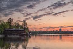 Sunset in Herastrau Park (Hattifnattar) Tags: bucharest herastrau park pentax dfa2470mm