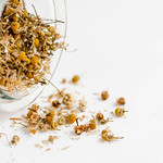 Close up of dry chamomile in a jar thumbnail
