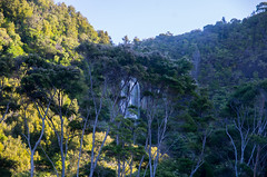 Idyllic Waterfall (LucaBumble) Tags: waterfall new zealand newzealand east cape eastcape north island northisland forest water beautiful landscape