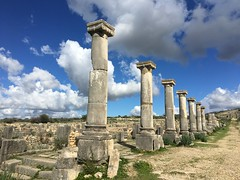 IMG_8910 (anisaheawad) Tags: morocco travel traveling nature digital meknes volubilis roman ruins