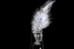 decoration in black and white (Herr Nergal) Tags: hx400v sony dsc close up macro makro black white bw sw schwarz weiss monochrome low key saarland feder feather spring bottle dark contrast kontrast raynox150 7dwf lowkey