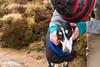 Edale-7409 (rob.evans22) Tags: edale kinderscout walk ramble