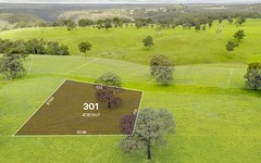 Lot 301, 165-185 River Road, Tahmoor NSW
