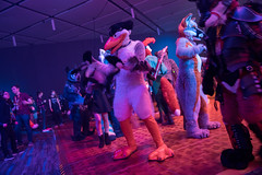 DSC01757 (Kory / Leo Nardo) Tags: furry fursuit suiting dance party dj con convention further confusion fc san jose marriott center 2018 fc2018 pupleo leo kory fur costume costuming cosplay animals