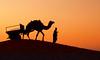 rajasthan - india 2018 (mauriziopeddis) Tags: jaisalmer thar desert deserto sabbia sand sunset tramonto sole sun red cammello camel landscaper travel street dune silhouette