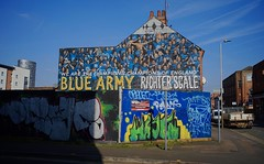 Leicester City wall art, February 2018 (sbally1) Tags: leicester leicestercity foxes mural premierleague champions
