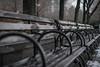 DSC_1095 (cdowney1981) Tags: newyorkcity nyc park bench