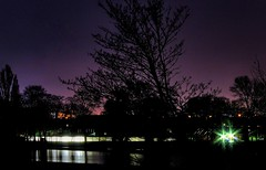 Green starry lights!!!🌟👍🌟 (LeanneHall3 :-)) Tags: aviary lake longexposure eastpark hull kingstonuponhull trees branches lights starrylights skyscape sky nightphotography nightshot night landscape canon 1300d purple