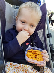 The resistance runs on cheddar whales (quinn.anya) Tags: paul toddler stroller snack cheddarwhales goldfish