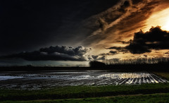 The Dark Winter Of 2017/2018 (Alfred Grupstra) Tags: nature sunset agriculture cloudsky landscape ruralscene sky cloudscape farm weather dusk outdoors water field dark scenics sun nopeople dramaticsky storm