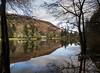 Loch Ard Mirror (vxisme.) Tags: lochard trossachs aberfoyle mirror lake trees olympusem1